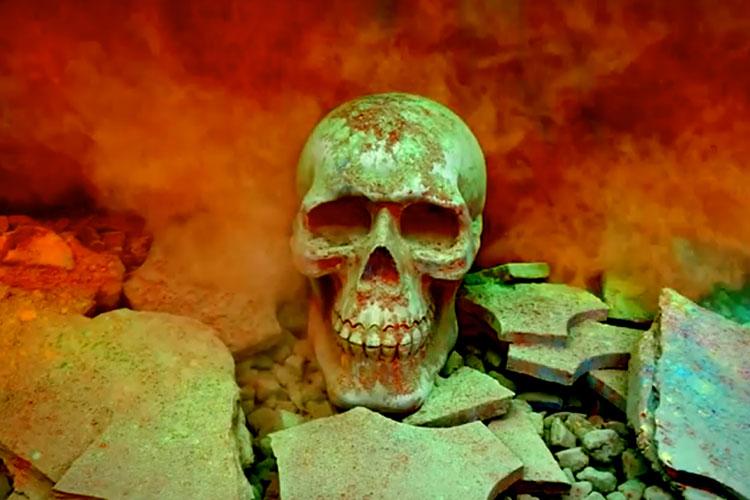 Calavera Polvos Holi Halloween